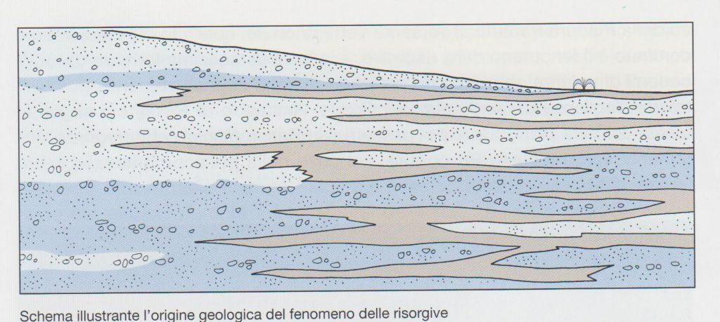 fig. 7 Sezione degli acquiferi della media pianura che formano le risorgive di vari fiumi