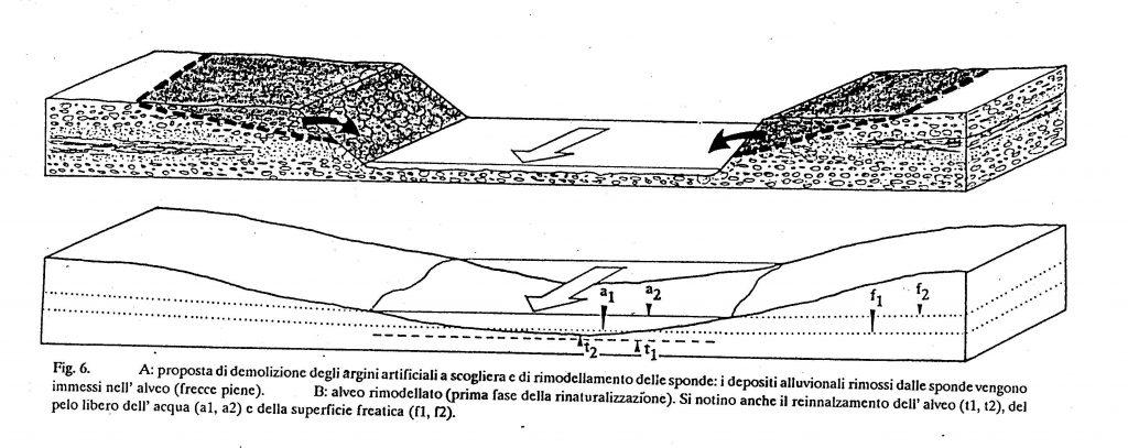 fig. 20.6 - La rinaturalizzazione del corso d'acqua è più efficace anche con la rimodellazione delle sponde arginali.